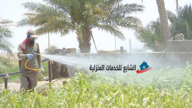 شركة الشايع للخدمات المنزلية بمدينة الرياض