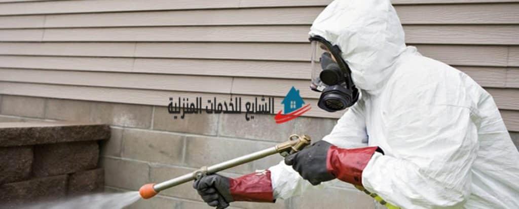 فوائد وأضرار الحشرات بالمنزل