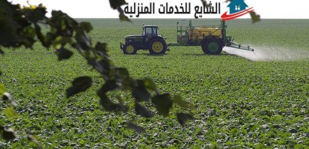 أفضل أنواع المبيدات الحشرية وطريقة استخدامها